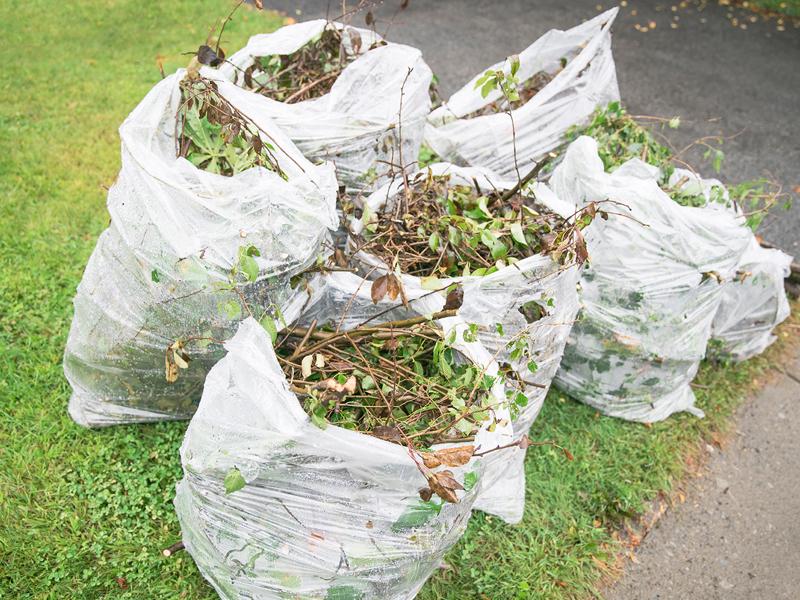 Matériaux acceptés pour la collecte des déchets organiques
